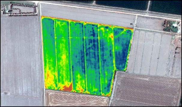 High res satellite imagery with NDVI